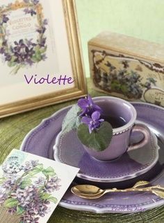 •ԼƛᐯᏋƝᗪᏋƦ•ԼᎥԼԼƛᏣ•ᎥƝƝ•✿ڿڰۣ lilac Inspiration Gallery | Every Last Detail Blue Lavender color Лаванда