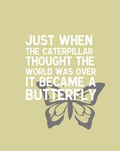 """Just when the caterpillar thought the world was over, it became a butterfly"".When you think things will go worse, they will only get better. Amazing Quotes, Great Quotes, Quotes To Live By, Me Quotes, Motivational Quotes, Inspirational Quotes, Fact Quotes, Famous Quotes, Cool Words"