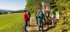 Heilige und Heilende Wege nach Mariazell - interessante Kräuterwanderung auf schönem, einfachen Pilgerweg.