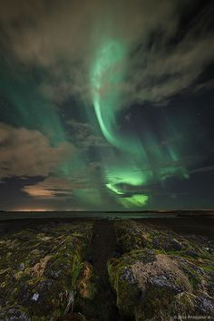 The Green of Iceland
