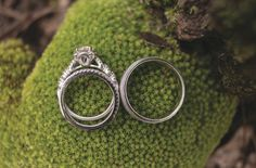I like the rings on the moss.