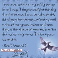 """Peeta with primrose to cheer katniss up    """"it's the old katniss's favorite kind of day."""""""