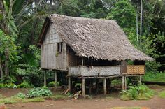 House in village Papua New Guinea. Village house in outback of Papua New Guinea , new guinea House In Village Papua New Guinea Stock Image - Image of home, nature: 25630025 Vanuatu, Bamboo House Design, Cute Cottage, Easter Island, Village Houses, Once In A Lifetime, Borneo, Papua New Guinea, Just Go
