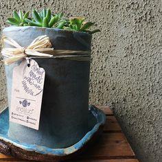 Desktop Kawaii Small Pearl White Ceramic Flowerpot Succulent Plant Pot Nursery Garden Porcelain Flower Pot Bonsai