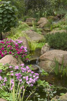 landscape edging ideas for water features backyard pondsgarden