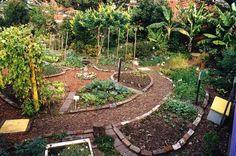 Small Vegetable Garden Ideas   Garden Path Ideas on Circular Vegetable Garden From The Wider Bark ...