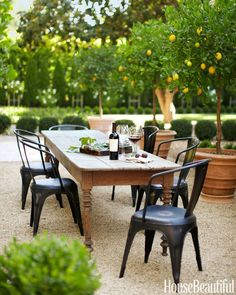 outdoor dining gravel ground lovely potted lemon trees