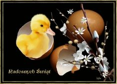 Wielkanoc: Animowane kartki wielkanocne z życzeniami Online Image Editor, Online Images, Christmas Ornaments, Holiday Decor, Cute, Home Decor, Easter Activities, Birthday, Heart