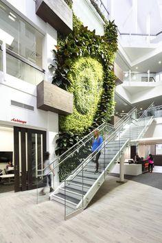 Una industria en crecimiento: Cómo traer el aire libre con arte vivo - The Globe and Mail