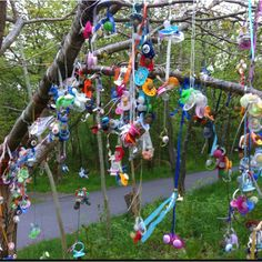 The Pacifier Tree, Scandiwegian tradition to say goodbye to your child's pacifier / dummy