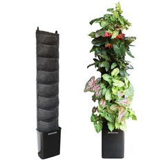 """Plants on Walls"" vertical gardening. It is a complete hydroponic system. Just add plants, water, and plant food."