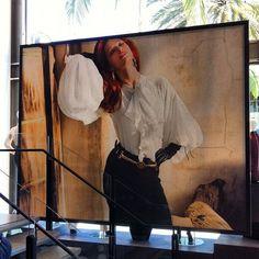 Artwork - Raphael Love Social Media Mentor and Speaker Shots, Social Media, Poses, Elegant, Classic, Artwork, People, Figure Poses, Classy