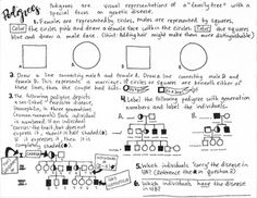 Biomolecules Nucleic Acid Coloring Sheet