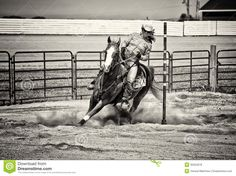 western-horse-pole-bender-gritty-sepia-rider-competing-bending-barrel-racing-competition-look-toning-35324978.jpg (1300×974)