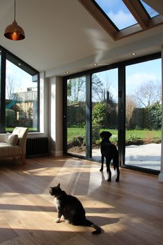 30 beautiful sunroom windows to relax in some space 22 Extension Veranda, House Extension Design, Extension Designs, Glass Extension, House Design, Conservatory Extension, Extension Ideas, Bungalow Extensions, Garden Room Extensions
