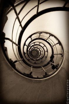 Love the circles in this spiral staircase
