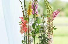 Zomerbloemen in vaas, maar dan net even anders!  - ereprijs-gladiool-vuurpijl-leeuwenbek-cleopatra. Meer voorbeelden lees je in ons lijstje 10x creatief met zomerbloemen