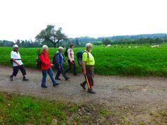 Wanderung am 30. September: Die Wanderspitze mit strammen Schritt