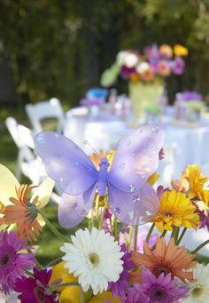 Butterfly in flowers_600x867