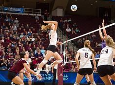 Volleyball Hosts Maroon-White Scrimmage on Monday The Texas A volleyball team invites fans to attend its Maroon and White scrimmage Monday, Aug. 20 at Reed Arena. Doors open at 5:15 p.m. and the team will take the court at 5:30 to begin warm ups.