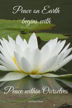 Peace on Earth begins with #Peace within Ourselves...