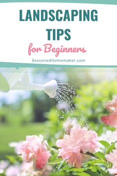 Most people never attempt a new garden landscape because they don't know where to start. In this popular pin I have 8 Gardening Landscape Tips for Beginners that will teach you How to Landscape. Vegetable Garden For Beginners, Gardening For Beginners, Gardening Tips, Vegetable Gardening, Easy Sewing Projects, Fun Projects, Popular Crafts, Backyard Makeover, Water Features