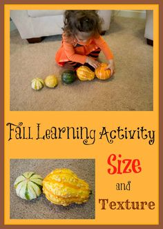 {Fun Fall Activity} Size and Texture Concepts with Gourds