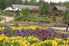 Reception on the Terrace    https://flic.kr/p/dxihPS   2488730270049217838ypgehV_fs   Botanical Gardens of the Ozarks Fayetteville Arkansas