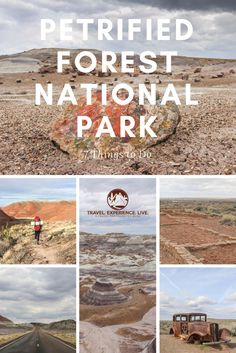 Things to Do in Petrified Forest National Park, Arizona