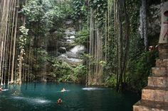 メキシコの大自然が作り出した幻想的な水中洞窟「セノーテ」 | トラベルハック|あなたの冒険を加速する