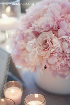 Pretty and fluffy soft pink flowers