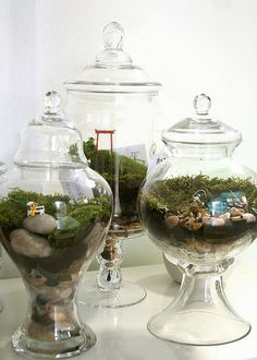(from the source) Twig is the project by two close friends, Michelle Inciarrano and Katy Maslow.  Michelle and Katy create small stories through terrariums and miniature figurines, from idyllic pastoral scenes with cows and horses to angry punk rockers and Central Park muggings.  I'd like to have or create one, I like the idea of the tarrarium in a modern view - I'll think about that!