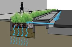 Empowerhouse: Bioretention cell diagram