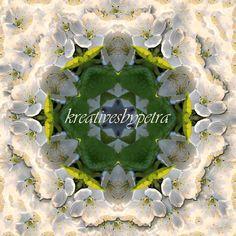 Mandala Kaleidoskop ''Marillenblüte''  Kreatives by Petra #mandala 'kaleidoskop #spiegelung #reflektion #reflection #innereruhe #inspiration #marillenblüte #apricotblossom #blumen #flowers #blüten #blossom #frühling #spring #sommer #summer #garten #garden Petra, Inspiration, Mandalas, Mosaics, Canvas, Summer, Biblical Inspiration, Inspirational, Inhalation
