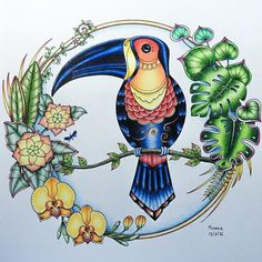 My toucan from Johanna Basford's Magical Jungle; I used only Prismacolor Premiers and FC Polychromos for this ⭐️⭐️⭐️ Jungle Coloring Pages, Coloring Book Art, Adult Coloring Book Pages, Colouring Pages, Illustration Jungle, Magical Jungle Johanna Basford, Coloring Canvas, Joanna Basford, Secret Garden Coloring Book