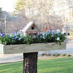 The birds need their very own garden. Follow Emmaline Harvey's instructions to Make a Birdhouse Planter | Garden Club