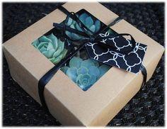 A caixa de presente com vasinhos de suculentas tem cara de presente tradicional e recheio inusitado