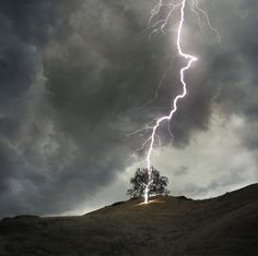 Never stand under a tree during a storm! Brilliant pic