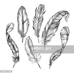 183311199-feather-set-gettyimages.jpg 414×414 pixels