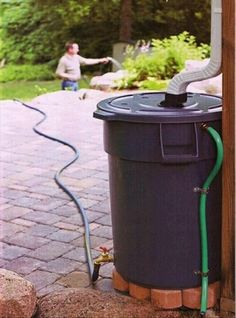Reduce: collect rainwater for the garden. Reuse: you don't need to buy a tank if you have a small sturdy container and water often!