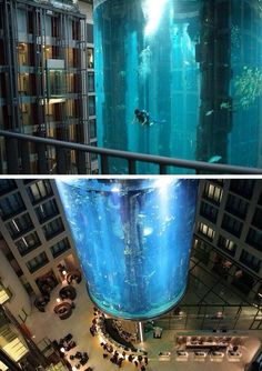 The amazing AquaDom. Berlin, Germany