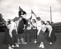 Iowa State Cyclones mascot Cy the Cardinal meets the cheer squad, 1954. Collegiate Manufacturing designed and built the new mascot with input from the Pep Council and the cheerleading squad.  The cost was $200.  The eight foot bird was introduced at Homecoming, October 16, 1954.