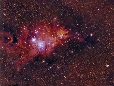 NGC2264 Christmas Tree Nebula Image contains Cone nebula, Christmas Tree cluster, NGC 2264, Hubble's variable nebula, NGC 2261, 15Mon