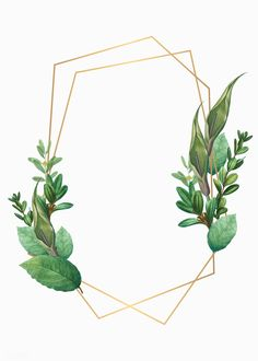 Tropical botanical frame design illustration | premium image by rawpixel.com / Aum / Donlaya / Kappy Kappy / manotang