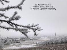 Hotărel, Bihor, România decembrie 2016 (1)