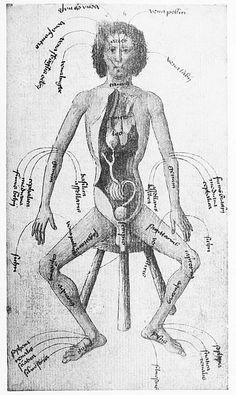 Tradition und Naturbeobachtung in den Illustrationen Medizinischer Handschriften und Frühdrucke vornehmlich des 15. Jahrhunderts (1907) by Karl Sudhoff