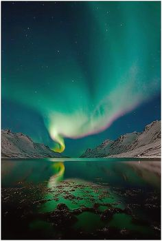 Are you about to embark on the trip of a lifetime, Aurora  Borealis hunting? The thrill of seeing this magnificent natural  phenomenon ...