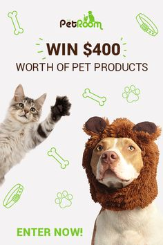 What would you do with $400 to spend for your pet? To make it happen all you have to do is sign up for our competition below. In fact, it's as easy as 1-2-3. Good Luck and happy Sharing.