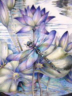 Dragonflies … how to paint them and what they mean! A new art class by Jody B … - Top 99 Pencil Drawings Fantasy Kunst, Fantasy Art, Silk Painting, Painting & Drawing, Dragonfly Art, Dragonfly Painting, Dragonfly Drawing, Art Watercolor, Pics Art