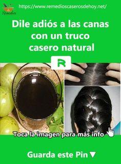 Ya puedes #Desaparece esas #Canas con este #Remedio #Casero